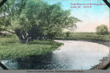 'East branch of the Du Page River, Lisle, Ill.'