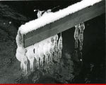 Icicles on wood