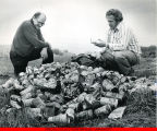 Two men sorting through a pile of beverage cans