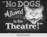 """No Dogs Allowed in this Theatre!""."