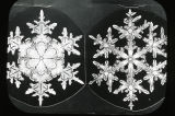 Snow crystals with inward radiating rays