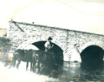Boy with mules by 9th Street Stone Bridge across DesPlaines River