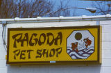 Pagoda Pet Shop on 8th Street