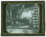 World's Columbian Exposition lantern slides: Fisheries Building, Boatload of Sturgeon