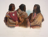 Chief of Blood-Indians, War-Chief of the Piekann Indians and Koutani Indian
