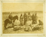 Indians killing and cutting up a Steer, Dakota