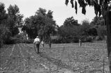 Man plowing field with hand plow and children in field, Kentucky, circa 1935-1947