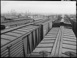 Freight cars-Clyde yards