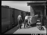 Unloading box-cars at siding of Safeway Stores, Denver