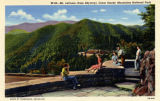 W-22, Mt. LeConte (from Skyway)