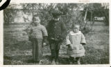 Three chinese children standing in front of a tree in their winter coats.