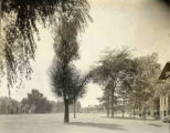 View of North Park College Neighborhood, 1911