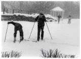 Cross Country Skiing, 1988