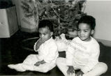 Little Boys Sitting by Christmas Tree