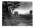 Section of a full scale diorama of a jungle on a south sea island, used to demonstrate air-borne...