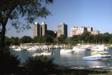 Boats in Diversey Harbor, and Lincoln Park apartment buildings