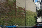 Ivy-covered wall, Wabash and Superior