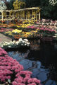 Garfield Park flower garden