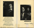 Jamaica (dustjacket)