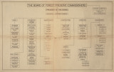 Organizational chart, 2 copies, undated