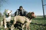 Animal Crimes Division/ dog fighting, image 02
