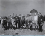 [Photo of a team of oxen breaking ground in front of the Adler Planetarium.
