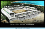 Artist's depiction of the Mayan temple ruins at Uxmal in Yucatan, Mexico.