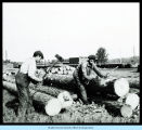 [Lumberjacks from the Hawthorne Lumber Company in New York (?) cutting logs with axes.]