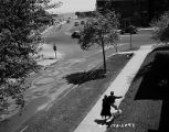 Traffic Intersection at Sheridan Road and Juneway Terrace (image 05)