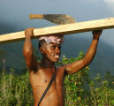 "Timber ""Thief,""_Macaya Biosphere Reserve, Gran Plenn, Haiti, 2008"