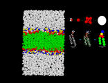 Coarse-grained DMPC bilayer /water simulation system