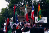 Vieques Rally Flags, Chicago