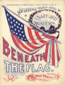 Beneath the Flag