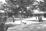 Campus Photograph Collection: Campus Scenes