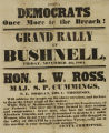 Civil War Peace Rally Poster 1864