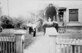 Smiths with Horse at 287 W Hale St Bushnell