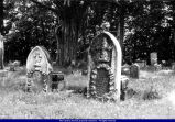 Erwin tombstones Sacred Heart Old Catholic Cemetery Telegraph Road 2002