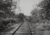 Peoria State Hospital Railroad Tracks