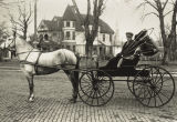 004520.JPG Man with Horse and Buggy