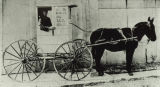 Colchester Postal Service Horse and Buggy