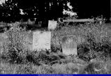 Walker Cemetery Shryack and Wood tombstones 2002