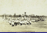 May Day Celebration WIU May 1907